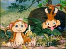 Про милих мавп