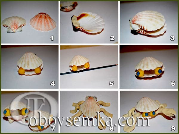 процесс изготовления моллюска и краба из ракушек