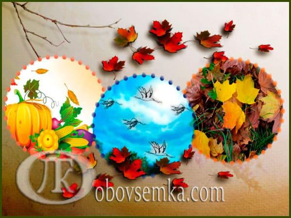 Що ми знаємо про осінь