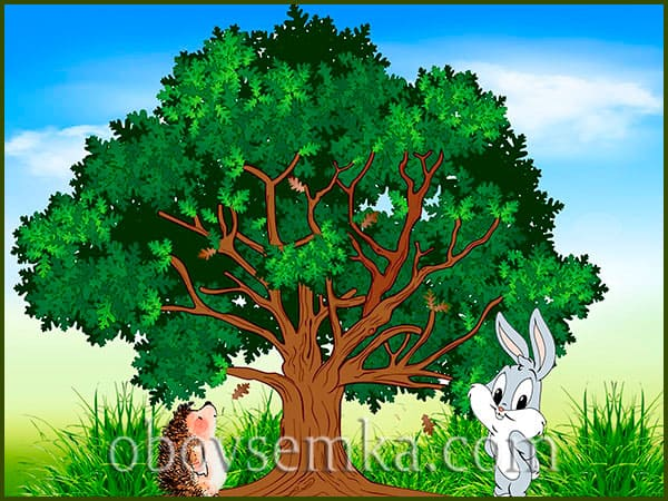 путешествие ежика и зайчонка