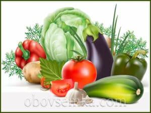 Как давно люди выращивают овощи