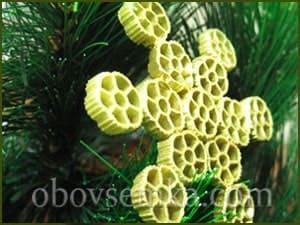 игрушка из макарон 2 на елке