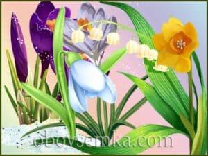 Загадки про весняні квіти в віршах